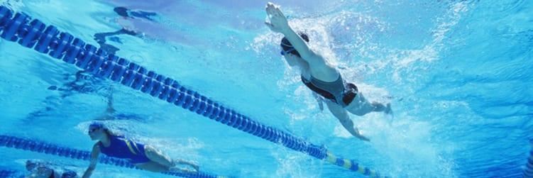 Website Feature Image swim team